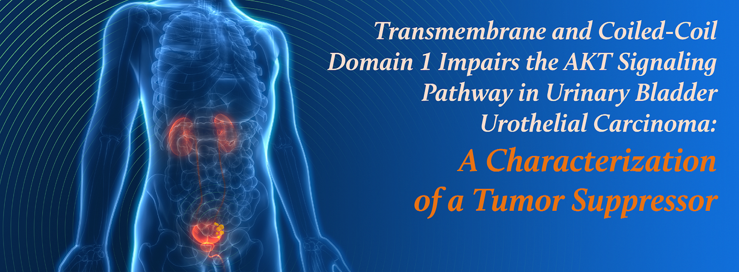 Transmembrane and Coiled-Coil Domain 1 Impairs the AKT Signaling Pathway in Urinary Bladder Urothelial Carcinoma: A Characterization of a Tumor Suppressor